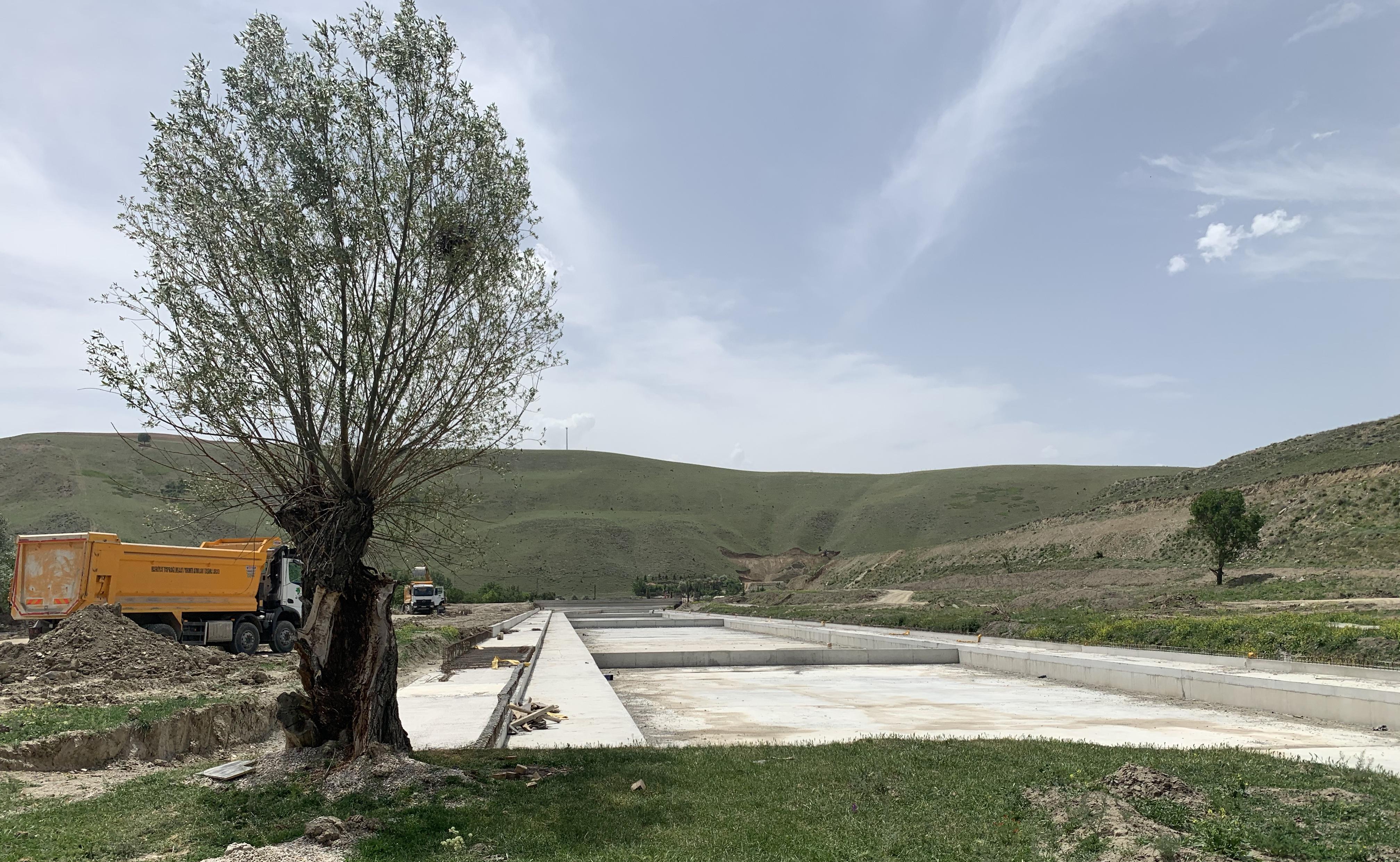 Çakma beton kanal yüz yılı aşkın zamandır orada olan zeytin ağacına gelmiş dayanmış…